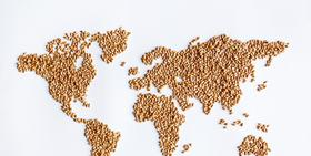 Agri-food sector outlook: in a global economy marked by protectionist tensions, what does the future hold?