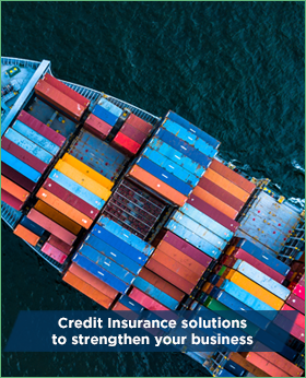 Credit insurance solutions